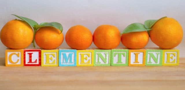 clementine-fedorafans.com