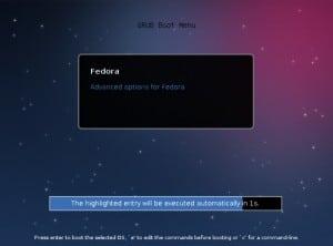 Boot Fedora