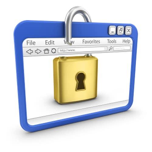 browser-plugin-security