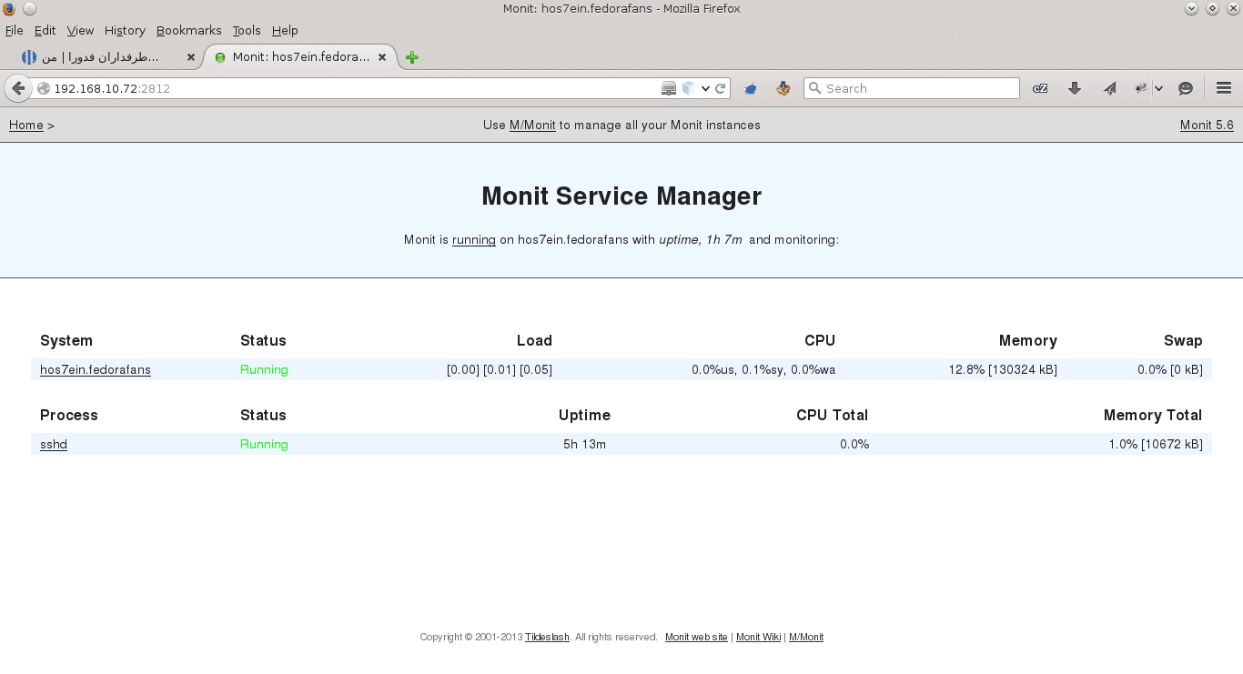 1-monit-panel web